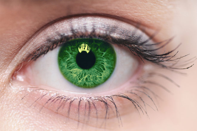 https://cdn.allaboutvision.com/images/color-cls-closeup-green-660x440.jpg